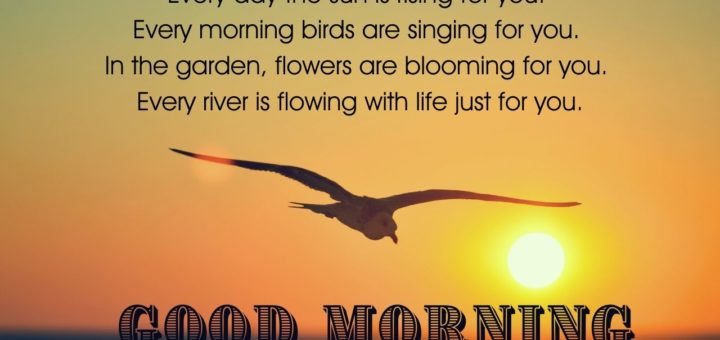 Good Morning birds images for whatsapp
