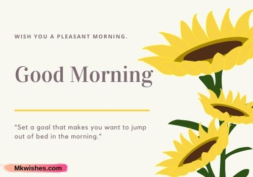 good morning flowers pictures for whatsapp with quotes