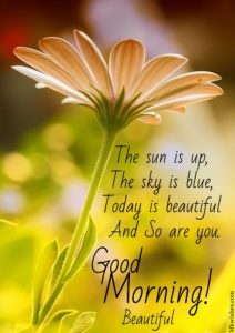 Good Morning Greeting Messages Images