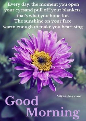 good morning sunshine quotes