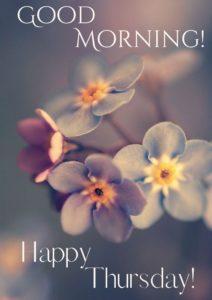 Good Morning Thursday HD Images