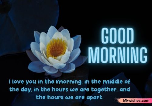 Best Good Morning Lotus images with quotes