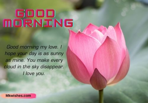 Beautiful Good Morning Lotus Quotes images
