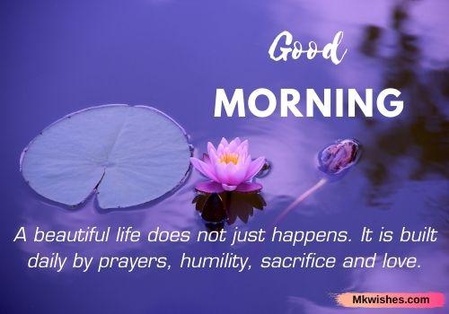 good morning lotus quotes