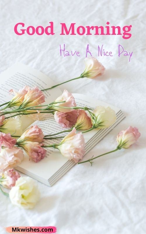 Good morning have a nice day with flowers