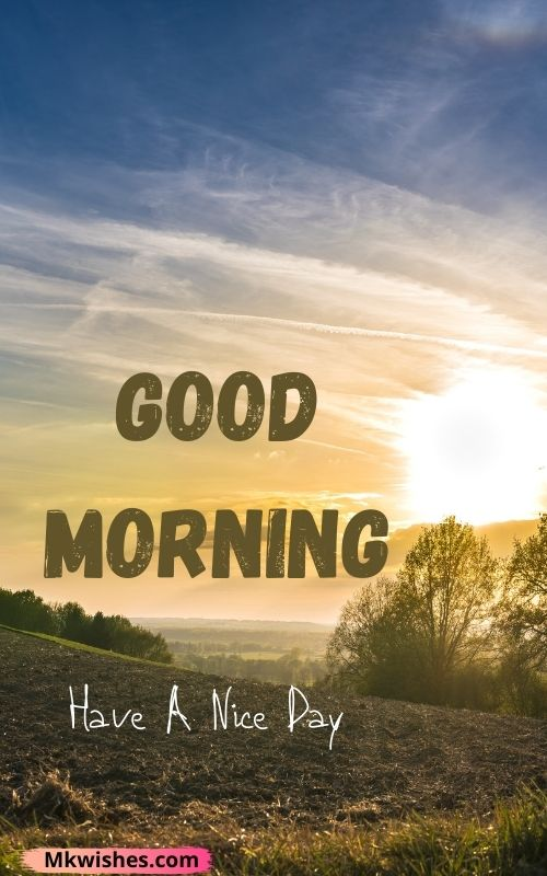 good morning friend have a nice day images