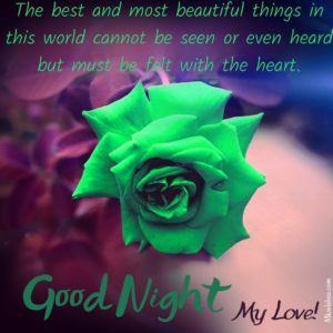 Good Night with Rose Images