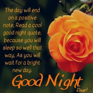 Good Night Rose Flower Images