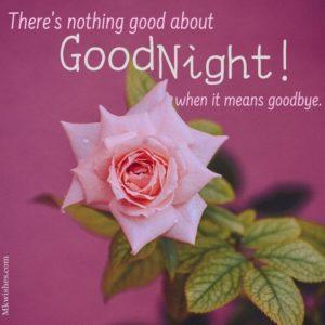 Good Night Rose Photos