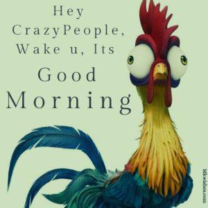 Funny Good Morning Photos