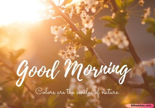 good morning nature positive quotes