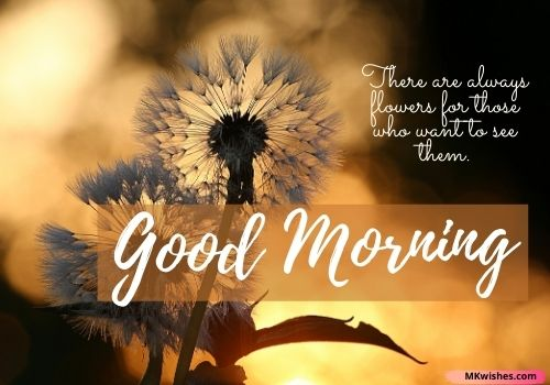 good morning nature positive quotes images