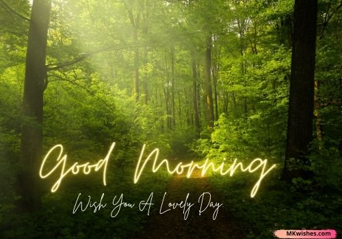 Best Good Morning nature Quotes photos
