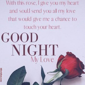 Good Night Rose Pictures