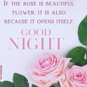 Good Night Flowers Pictures