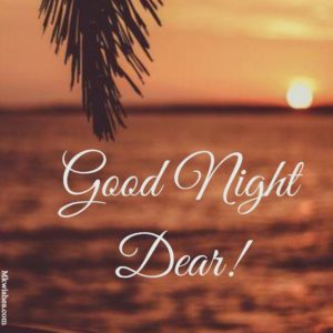 Good Night Dear Pic