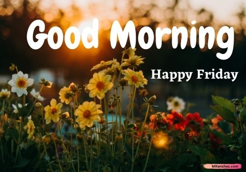 Good morning Friday flowers images
