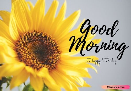 Good morning friday flowers photos