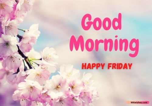 Happy Friday good morning flowers images