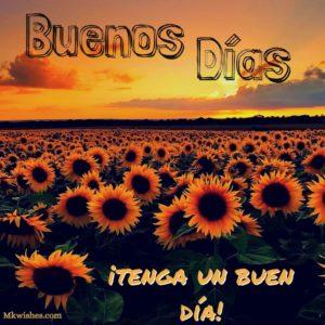 Buenas dias fotos hd