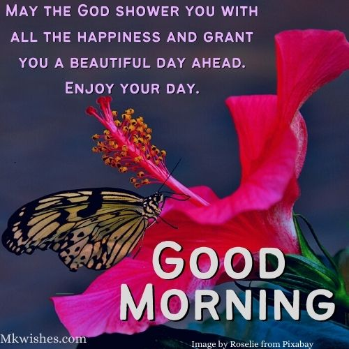 Good Morning Wishes with Flowers