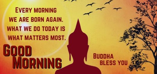 Good Morning Buddha Quotes