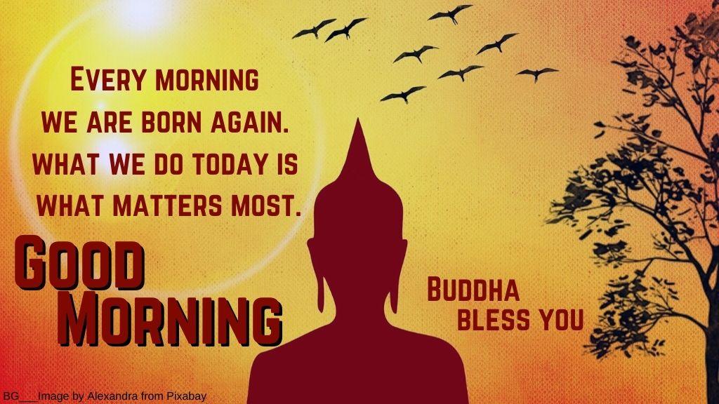 Good Morning Buddha Quotes
