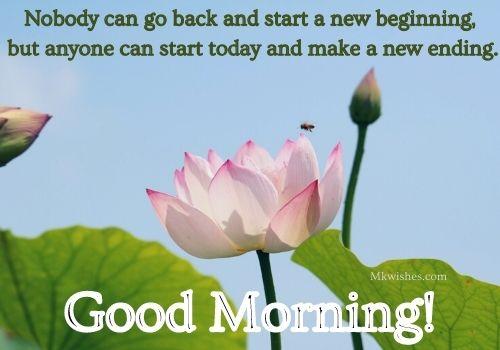 Good Morning Flower Images