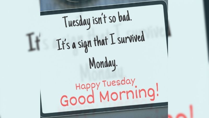 Happy Tuesday Funny Images