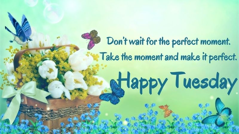 Happy Tuesday Quotes Images