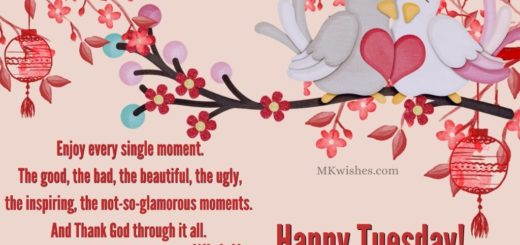 Happy Tuesday Images Images